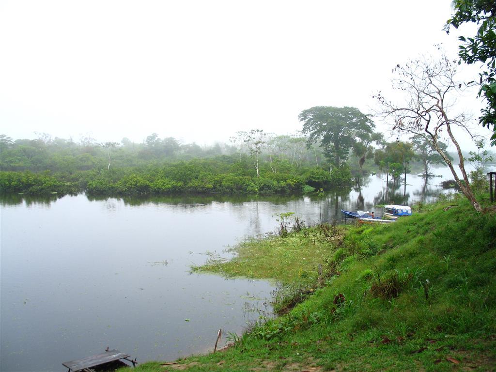 De cada 5 vasos de agua 1 viene de  la Amazonia