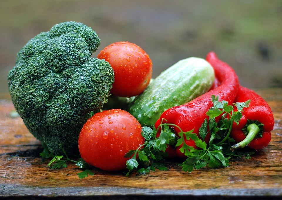 Agroecología: un modelo agroalimentario justo y saludable